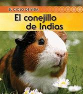 El Conejillo de Indias (Guinea Pig) - Royston, Angela