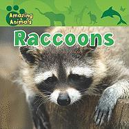Raccoons - Baicker, Karen