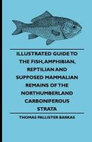 Illustrated Guide to the Fish, Amphibian, Reptilian and Supposed Mammalian Remains of the Northumberland Carboniferous Strata - Barkas, Thomas Pallister; Wood, John George