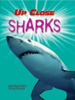 Sharks - Gibbons, Lynns