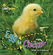 Egg to Chicken - de La Bedoyere, Camilla