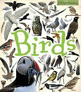 Birds - Jennings, Terry J.