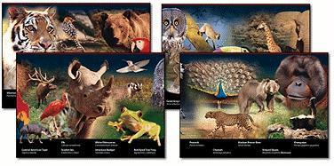 Wildlife - Mark Twain Media