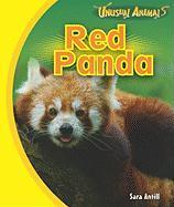 Red Panda - Antill, Sara