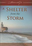A Shelter from the Storm - Ozrovech, Solly