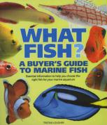 What Fish? - Lougher, Tristan