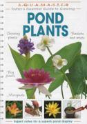 Pond Plants - Lambert, Derek