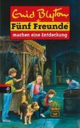 Fünf Freunde, Neubearb., Bd.21, Fünf Freunde machen eine Entdeckung (Einzelbände, Band 21)