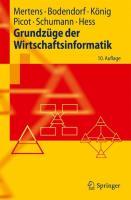 Grundzuge der Wirtschaftsinformatik (Springer-Lehrbuch)