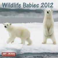 Wildlife Babies 2012 Broschürenkalender