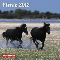 Pferde 2012 Broschürenkalender