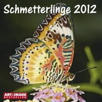 Schmetterlinge 2012