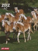 Pferde 2012 Posterkalender
