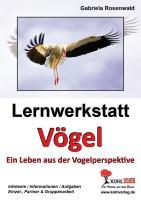 Lernwerkstatt Vögel Ein Leben aus der Vogelperspektive