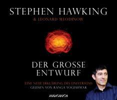 DER GROSSE ENTWURF - HAWKING,S