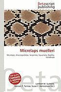 Micrelaps Muelleri