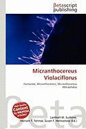 Micranthocereus Violaciflorus