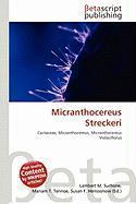Micranthocereus Streckeri