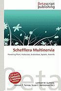 Schefflera Multinervia