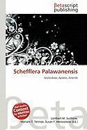 Schefflera Palawanensis