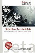 Schefflera Parvifoliolata