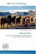 Galloway Pony