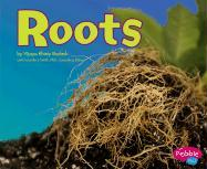 Roots - Bodach, Vijaya