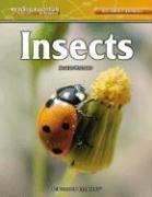 Insects - Mattern, Joanne