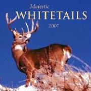 Majestic Whitetails 2007 Calendar
