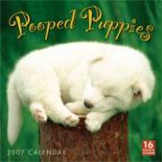 Pooped Puppies 2007 Calendar: 16 Month Calendar