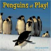 Penguins at Play! 2007 Calendar: 16 Month Calendar