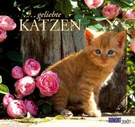 ... geliebte Katzen 2007. Kalender