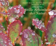 Stille Schönheit der Natur 2007.
