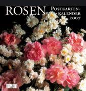 Rosen 2007. Postkartenkalender