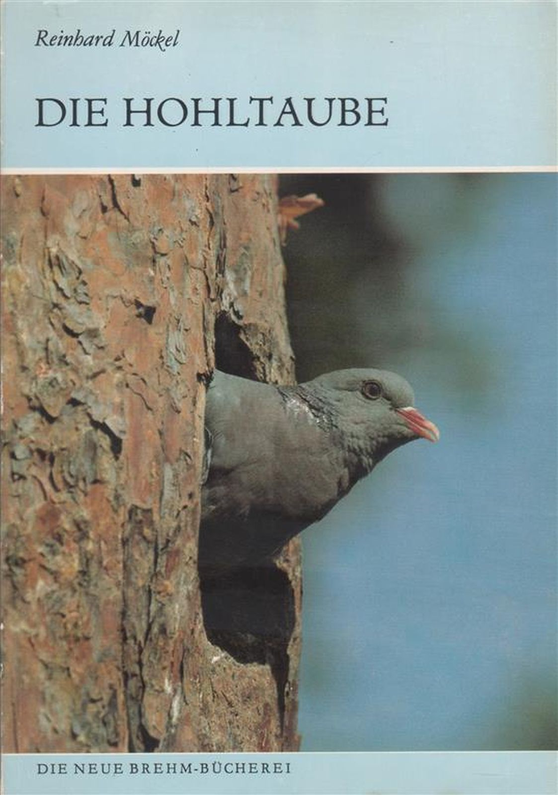 Die Hohltaube (Columba oenas) - MÖCKEL, Reinhard