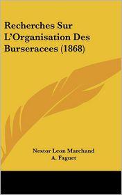 Recherches Sur L'Organisation Des Burseracees (1868) - Nestor Leon Marchand, A. Faguet