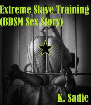 2940150828933 - Extreme Slave Training (BDSM Sex Story ...