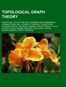 Topological graph theory