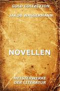 Jakob Wassermann: Novellen