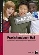 Praxishandbuch DaZ - Grundlagen - Unterrichtsbeispiele - Arbeitsblätter (5. bis 10. Klasse)