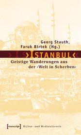 Istanbul - Geistige Wanderungen aus der Welt in Scherben - Georg Stauth, Faruk Birtek
